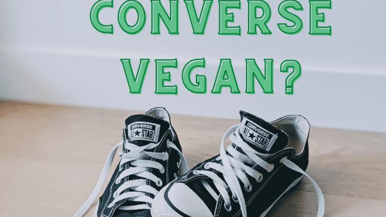 are converse vegan?